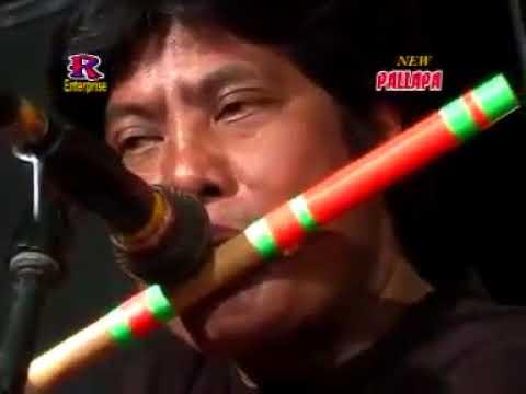 Arjun   new palapa
