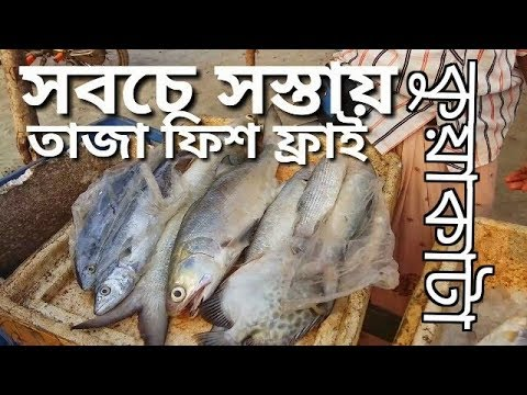 Kuakata। Kuakata travel guide in cheapest way 2017। Best live fish fry। Live fish market Bangladesh