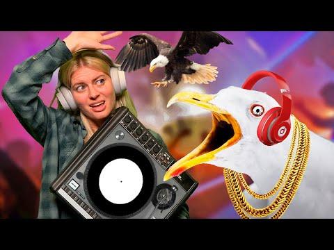 Bass Droppings - DJ and Bird Simulator Gameplay