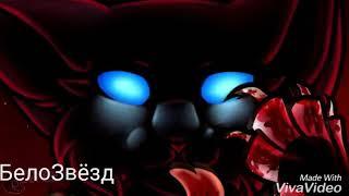 Бич-Scourge[Коты Воители-Cats Warriors {Все мои друзья входят во вкус(RUS)[заказ:AmiraAkhmadjanova]
