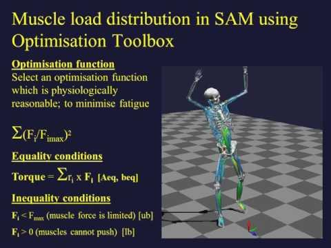Biomechanical Analysis in MATLAB and Simulink