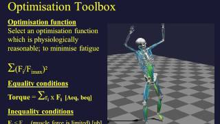 Biomechanical Analysis in MATLAB and Simulink