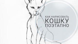 Как нарисовать кошку карандашом поэтапно | Step by Step Cat Drawing