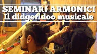 Seminari armonici 2015: il didjeridoo musicale