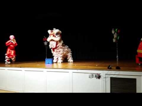 Lion dance at UMASS Lowell