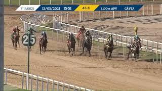 Vidéo de la course PMU PREMIO MAGNUM OPUS
