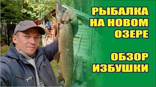 Рыбалка на новом озере обзор избушки собираем грибы