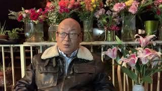 """中国煤炭:蹊跷的""""纯进口大国""""!(20191206第846期)"""