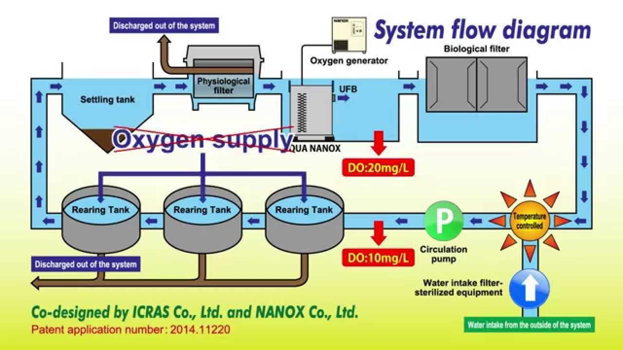 A Closed Recirculating Aquaculture System Cras Using