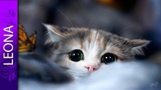 Как рисовать кошку в фотошопе