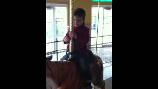 Carousel at the Turtle Back Zoo - early 2012 - part1