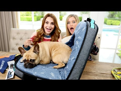 NEW Amazing Dog Travel Bed!  Unboxing with Rosanna!