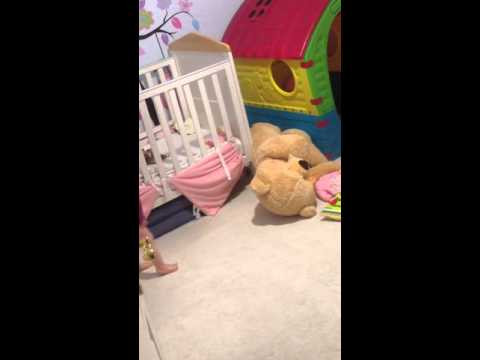 British shorthair Cat playing with a baby