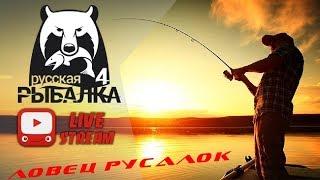 Русская рыбалка 4///Russian Fishing 4///В погоне за трофеем..