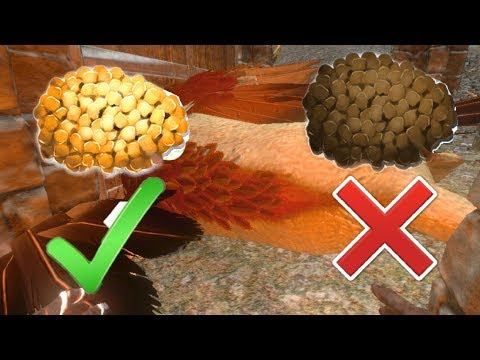 HOW TO MAKE SUPER GRIFFIN KIBBLE!! + GRIFFIN TAMING  - ARKMOBILE