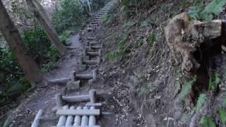 阿部倉登山口より大楠山へ1(横須賀市)