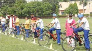 LA Sovereign Bicyle