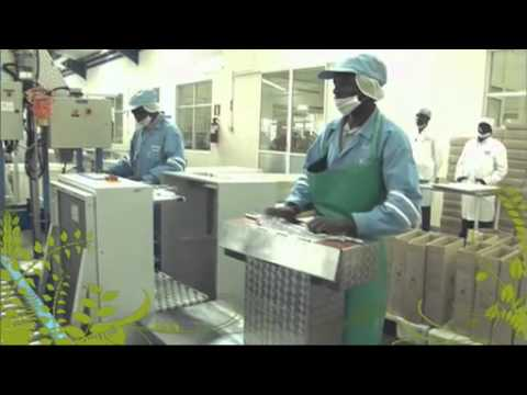 The Business of Food - Kenya: In a Nutshell