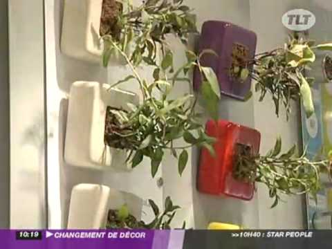 changement de d cor les plantes aromatiques youtube. Black Bedroom Furniture Sets. Home Design Ideas