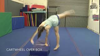 Cartwheel Over Box (Testing skill)