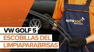Desmontar Escobillas de parabrisas VW - vídeo tutorial