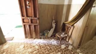 Старый дом в Аликанте, под капитальный ремонт, ДОРОГО! а.н. SpainTur