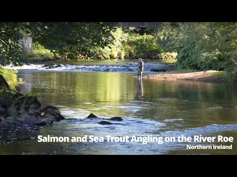 Salmon And Sea Trout Angling On The River Roe, Northern Ireland