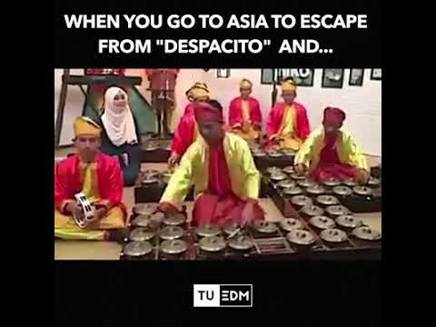 Despacito (Versi Asia)