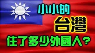 台灣到底住了多少外國人?【聊時事004】