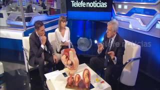 Subrogación de vientre: la palabra de Lopez Rosetti - Noti20