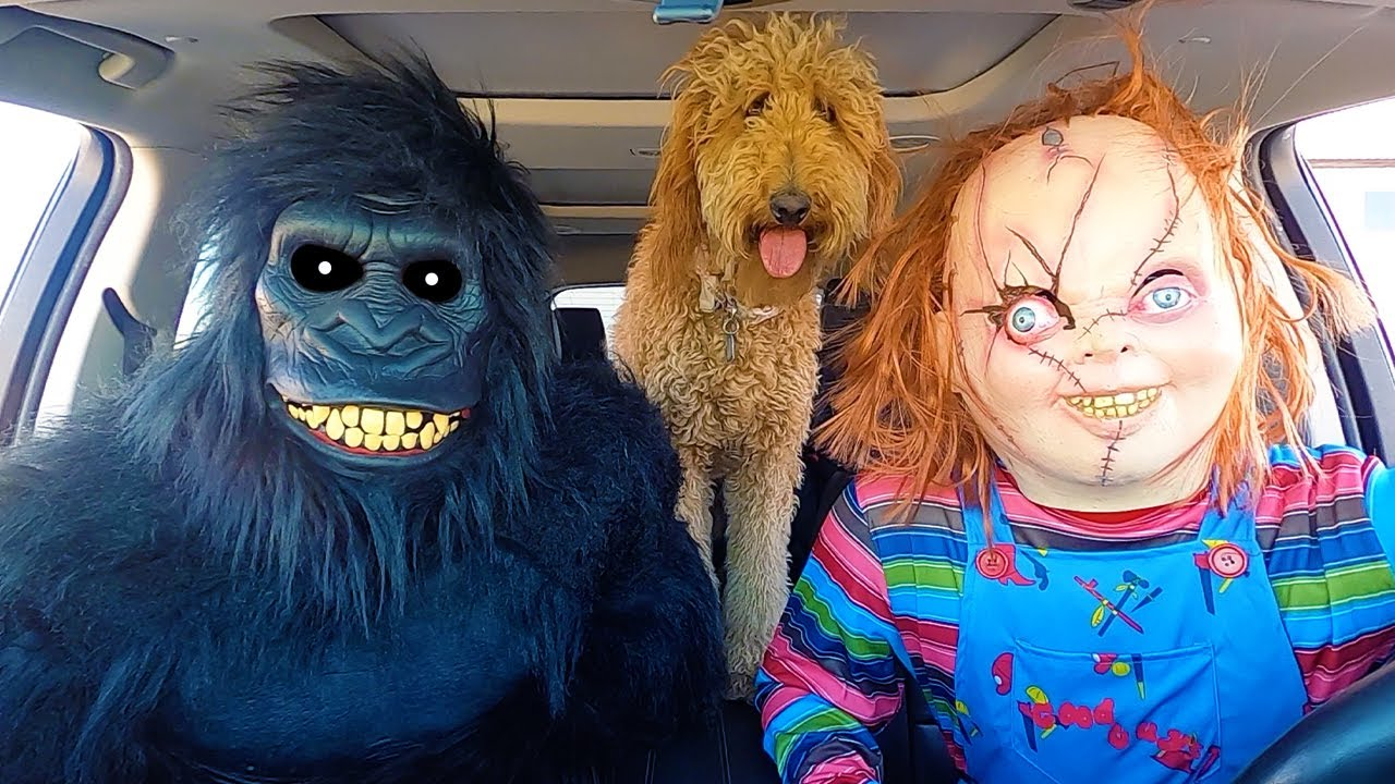 Chucky Surprises Puppy & Gorilla With Car Ride Chase!