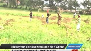 Enkaayana e'ettaka zitabudde ab'e Ggaba thumbnail