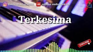 Gambar cover Lagu dangdut elekton - Terkesima