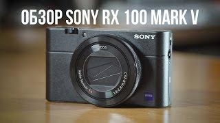 Мелкая зверюга. Обзор Sony RX 100 mark 5.