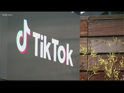 TikTok-plans-aggressive-e-commerce-plan