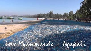 Ngapali Beaches 2015 [love-Myanmar.de]