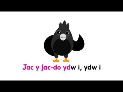 Jen a Jim a'r Cywiadur - Cân Jac y Do