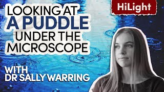 Dr Sally Warring // What life can we find in a puddle? // Inspiring Guest HiLight