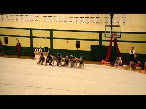 Ottawa Rhythmic Gymnastics Club (ORGC) - Recreational Program