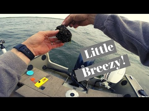 Saginaw Bay Trolling- Walleye, Drum And Catfish!