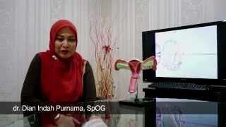 dr. Dian Indah Purnama, SpOG