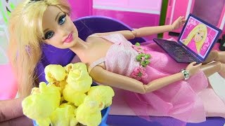 """Cuộc Sống Barbie & Ken (Mùa 2) """"Tập 2""""  Barbie Bị Bắt Cóc/ Barbie Get Kidnaped"""