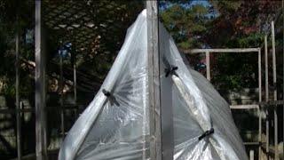 A Really Green Greenhouse ~ Ricks Tips Diy