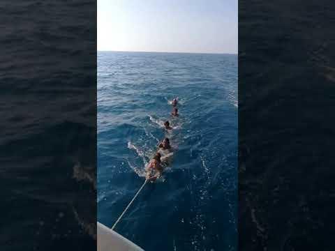 Bagno A Mare A Traina Dalla Barca A Vela