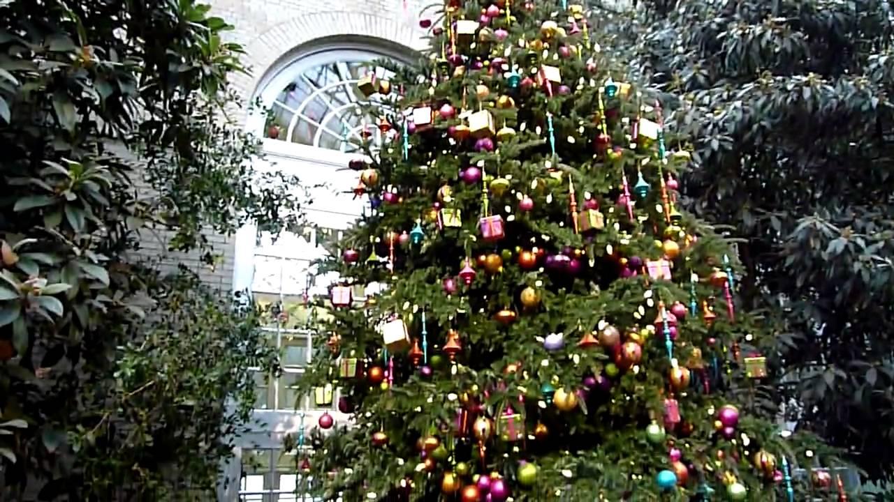 2009 12 25 arbol de navidad del jardin botanico youtube