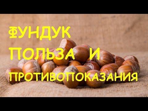 Лесной орех фундук польза и противопоказания