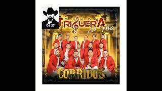 El Borracho 》 Banda La Triguera 》》》》》subale