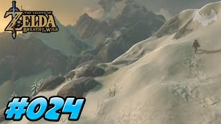 KÄMPFEN MACHT LAUNE - THE LEGEND OF ZELDA: BREATH OF THE WILD #024 - NINTENDO SWITCH - Dhalucard