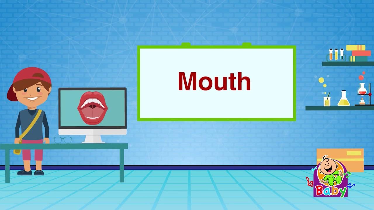 ترجمة Mouth في العربي ة قاموس