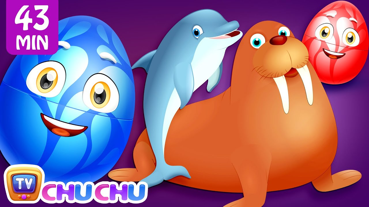 Learn Wild Sea Animals + More ChuChu TV Surprise Eggs Learning Videos SUPER COLLECTION 2